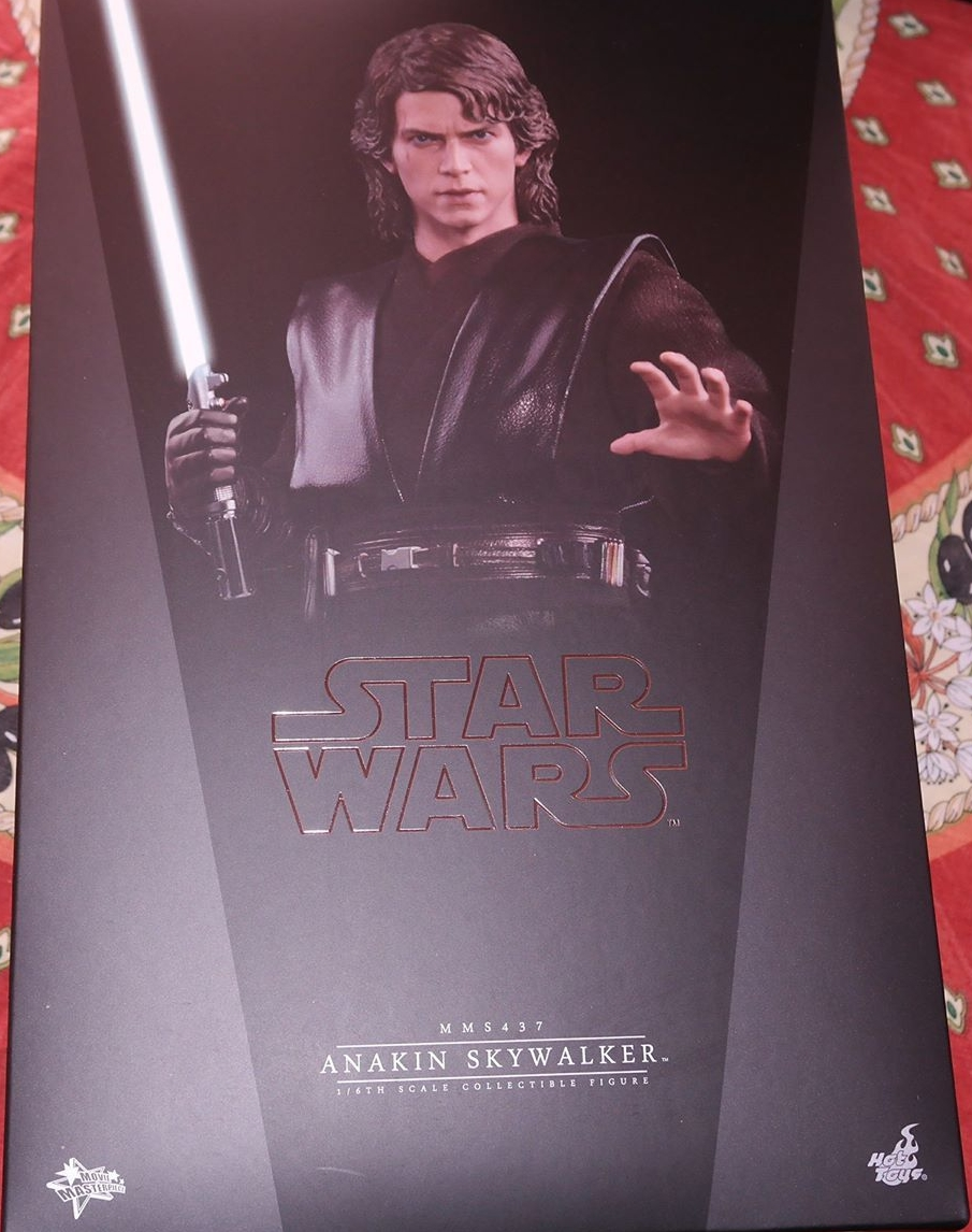Hot Toys Anakin Skywalker Review 4 Future Of The Force